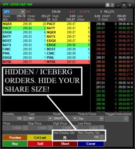 Iceburg or Hidden Order